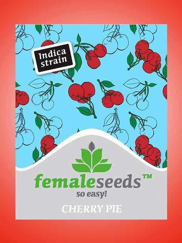 Cherry Pie Female Seeds Opakowanie