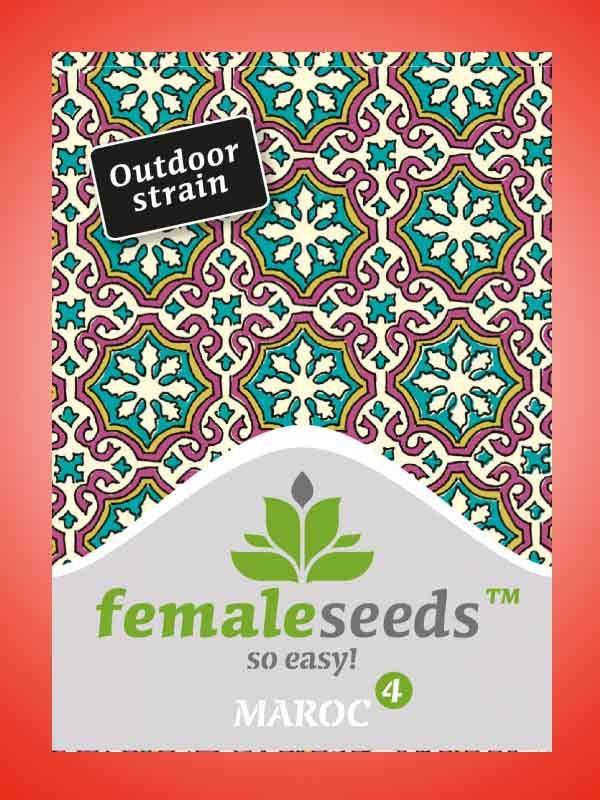 Maroc Female Seeds Opakowanie