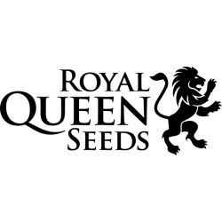 Royal Queen Seeds Producent