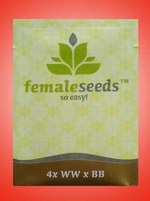 WW x BB Female Seeds Opakowanie