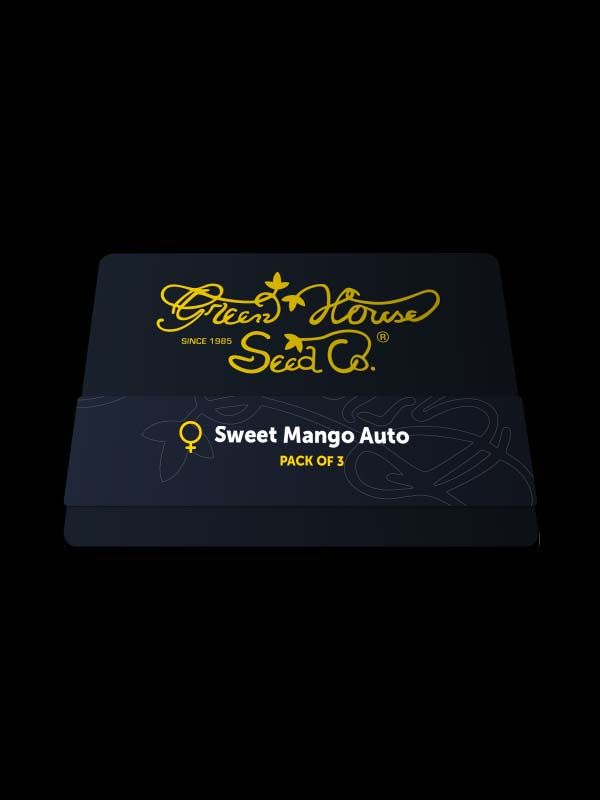 Sweet Mango Auto Nasiona