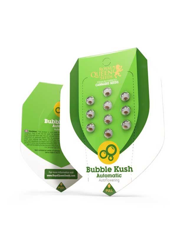 Bubble Kush AUTO Opakowanie