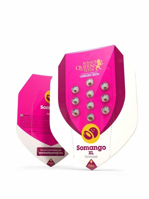 Somango XL RQS Opakowanie