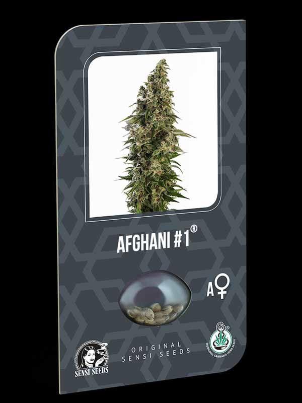 Afghani #1 Automatic Sensi Seeds Nasiona