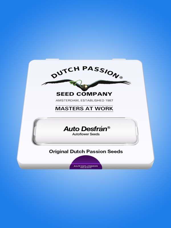 Auto Desfrán Dutch Passion Opakowanie