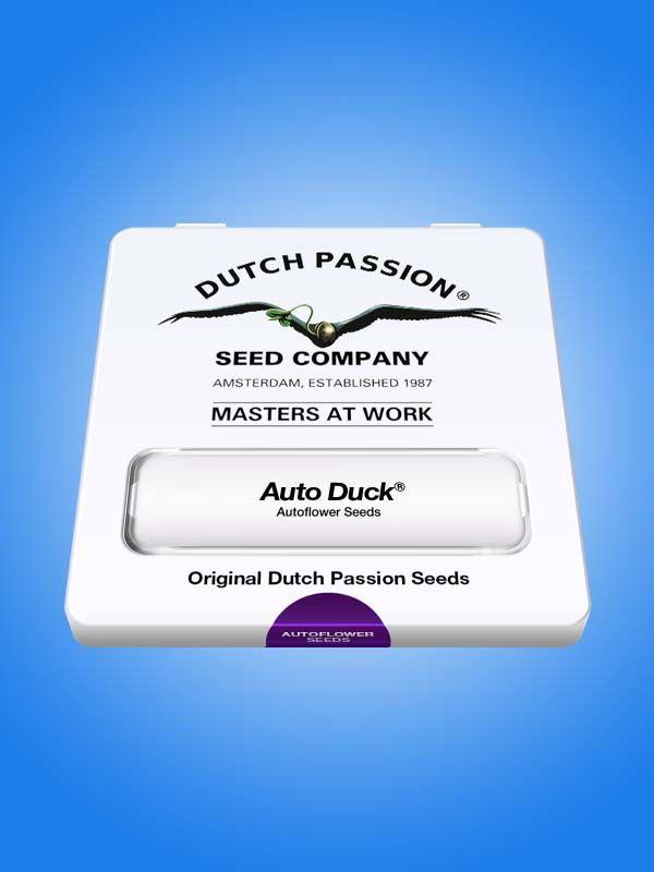 Auto Duck Dutch Passion Opakowanie