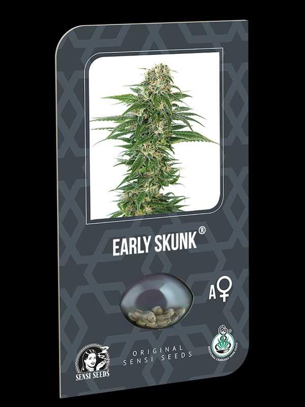 Early Skunk Auto Sensi Seeds Nasiona