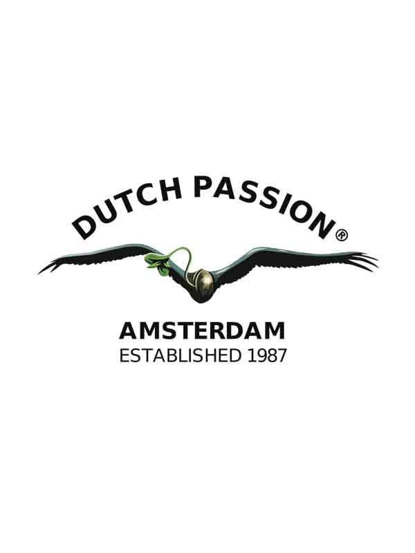 Producent nasion marihuany Dutch Passion