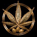 Nasiona Marihuany Cannabis Sklep