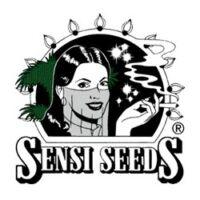 Sensi Seeds producent nasion marihuany