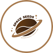 Nasiona marihuany Space Seeds