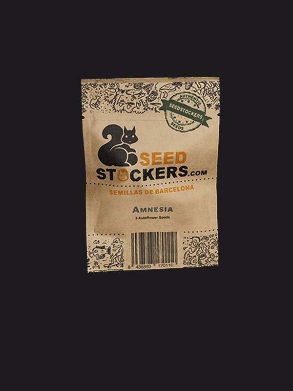 opakowanie Seed Stockers Amnesia Auto