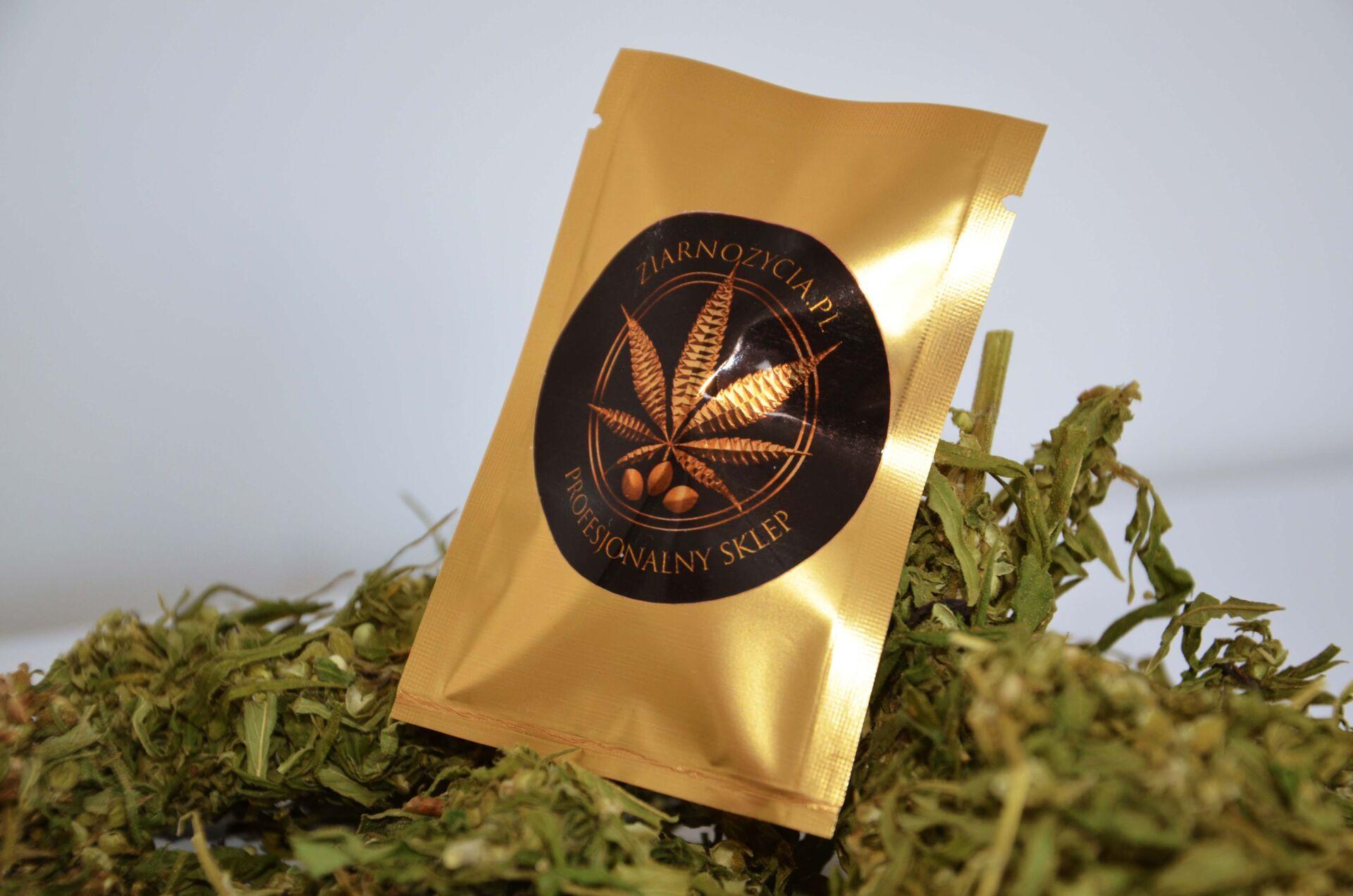 nasiona legalne marihuany ziarno życia